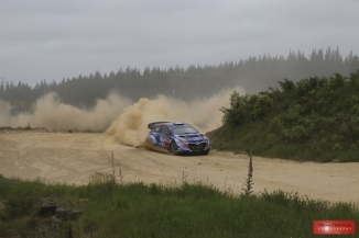 Rally of New Zealand 2017 - SS8 TMMI